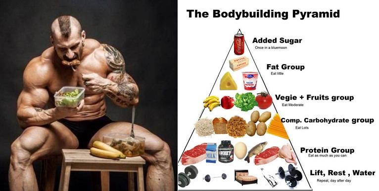 Пирамида построения мышечной массы - wefitnes