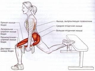 Упражнения стульчик у стены - техника выполнения, польза и вред ...