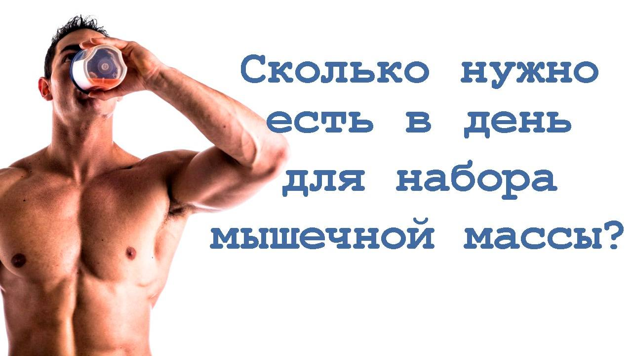 Питание для набора мышечной массы для мужчин | the base