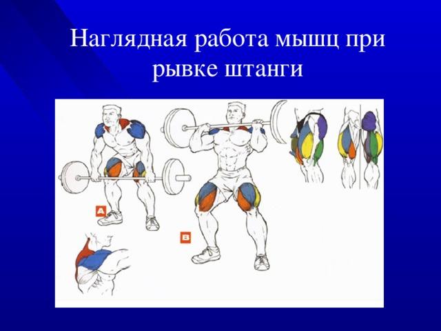 Обучение рывку с нуля. последовательность. | спортивний клуб mkcf