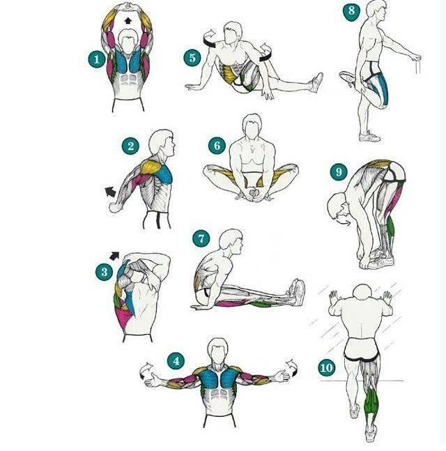 Разминка перед тренировкой — супер комплекс