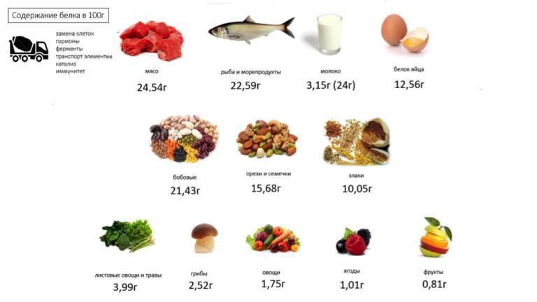 Продукты с высоким содержанием белка (таблица)