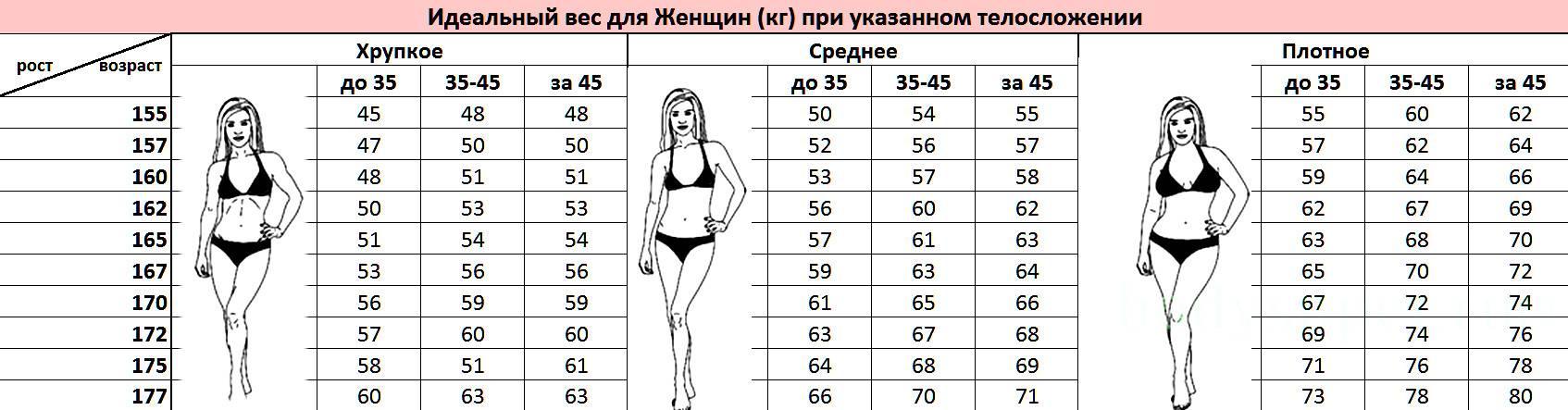 Золотое сечение пропорция тела человека женщины, мужчины, ребенка