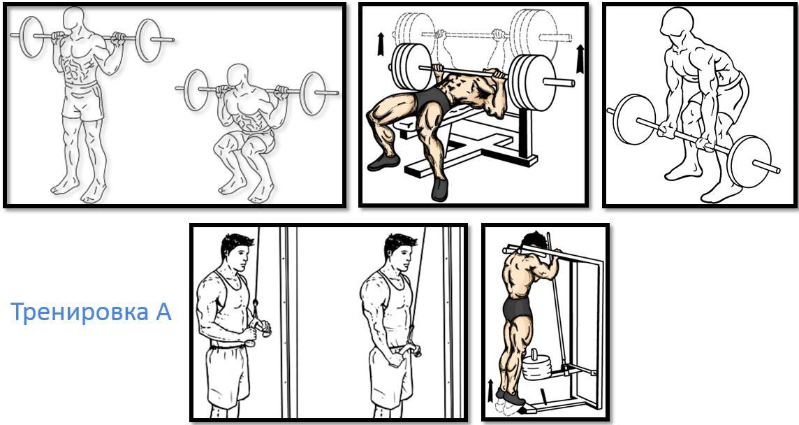 Советы по тренировкам в тренажёрном зале. |