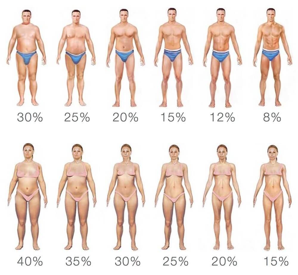 Какая норма жира в организме женщины: здоровый процент жировой прослойки в теле женщинwomfit