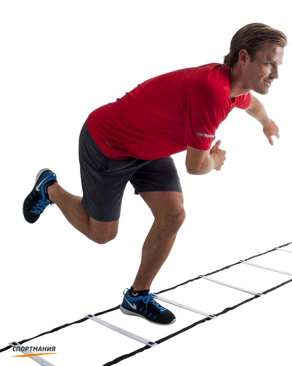 Координационная лестница для уроков физической культуры | физическая культура  | современный урок