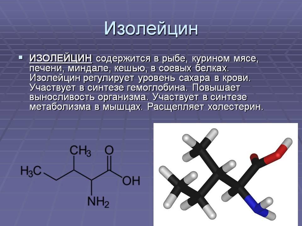 Лейцин: полезные свойства и применение