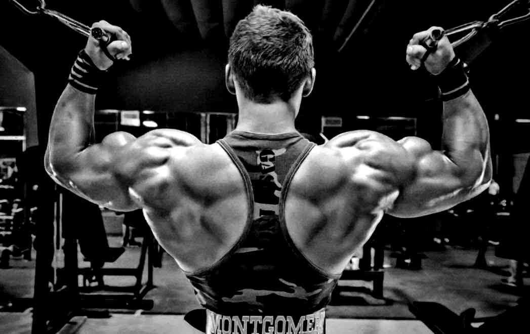 Лучшие программы тренировок для набора мышечной массы