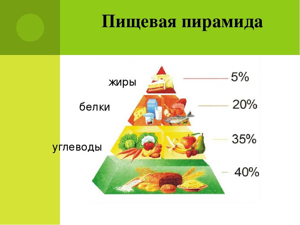 Принципы правильного питания: 15 постулатов здорового образа жизни