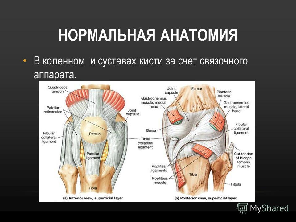 Эффективные упражнения для укрепления коленного сустава