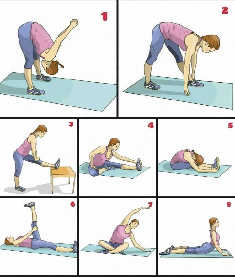 Упражнения на растяжку в домашних условиях для начинающих