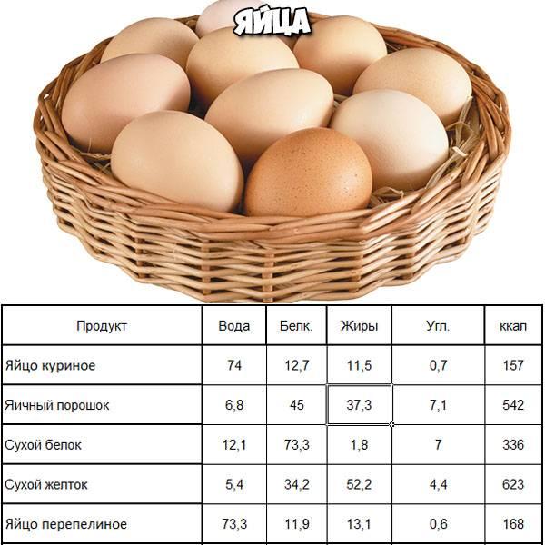 Сколько калорий в яйце и правила употребления