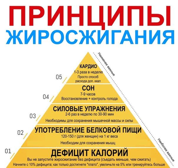 Сжигание жира в домашних условиях и в зале - allslim.ru