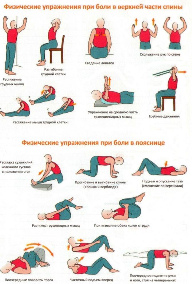 Как закачать спину при грыже в пояснице: комплекс упражнений и правила выполнения