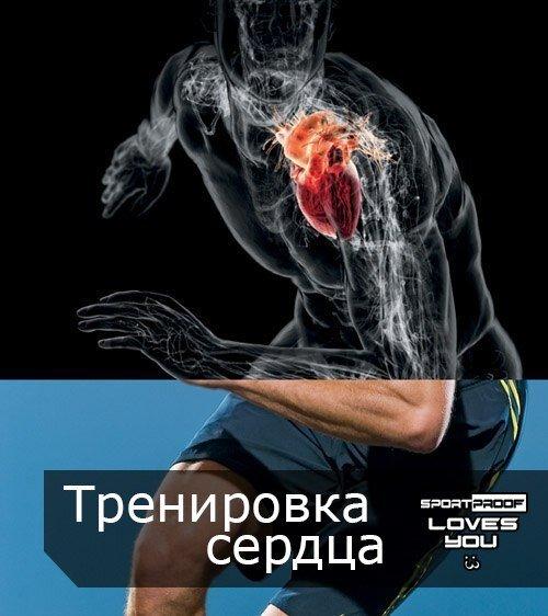 Тренировка сердца и развитие выносливости: советы по фитнес-нагрузкам