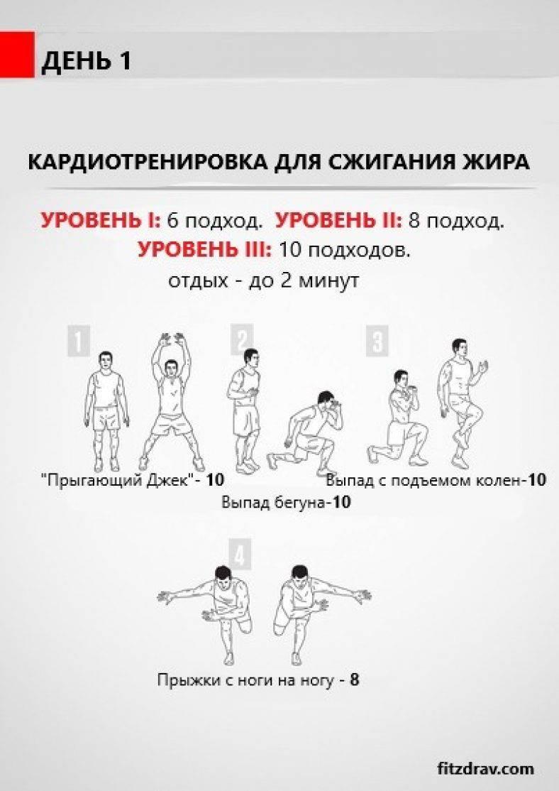 Эффективная программа тренировок для мужчин для похудения в тренажерном зале