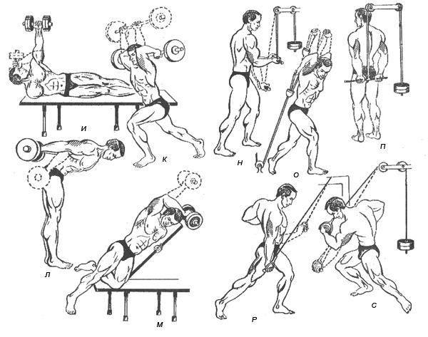 Cильные атлетические руки: как накачать трицепс в домашних условиях