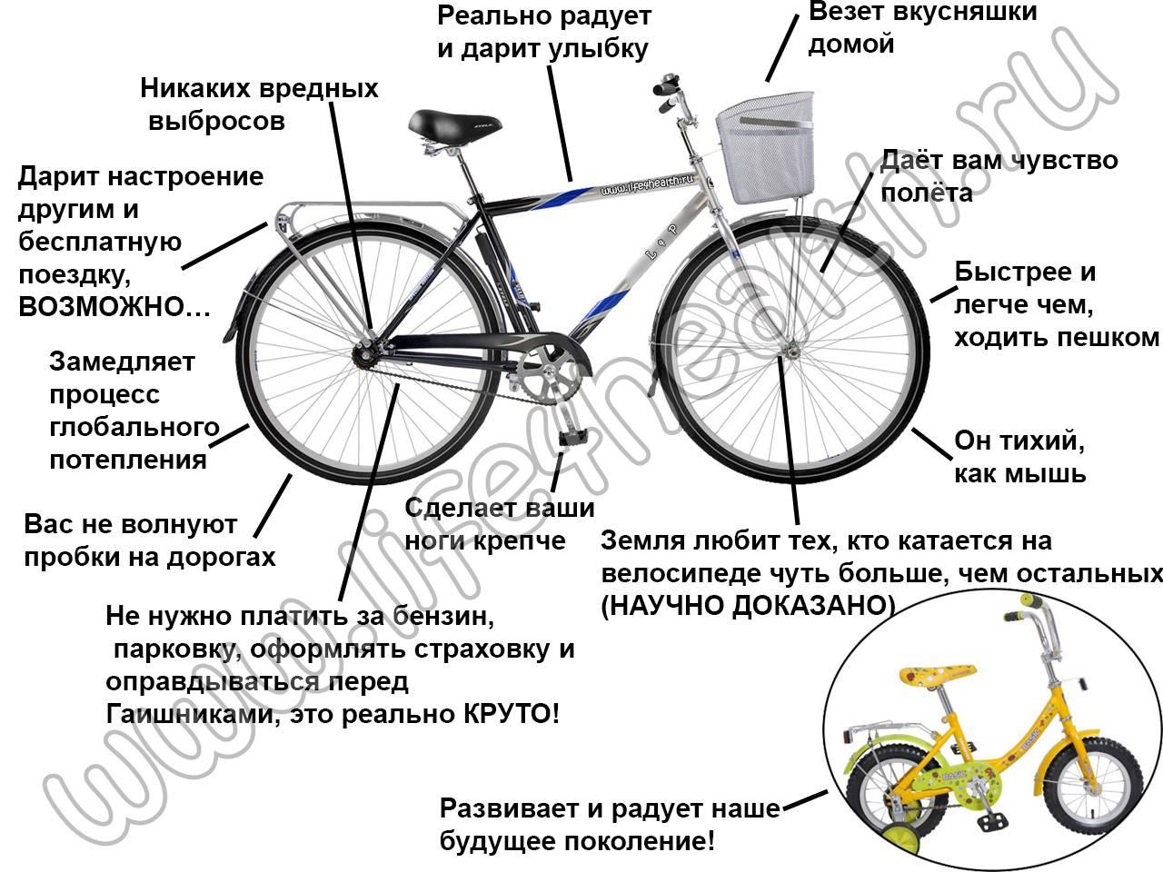 На что обращать внимание при покупке велосипеда: 10 советов новичкам