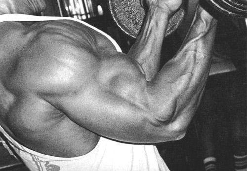 Мышечный отказ - стоит ли применять его в своей программе тренировок и работать через немогу?