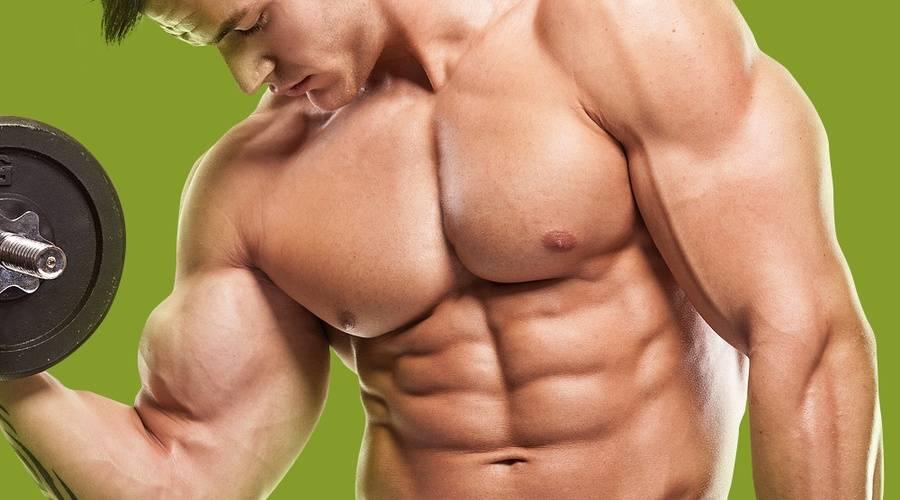 Сколько нужно бегать при наборе мышечной массы