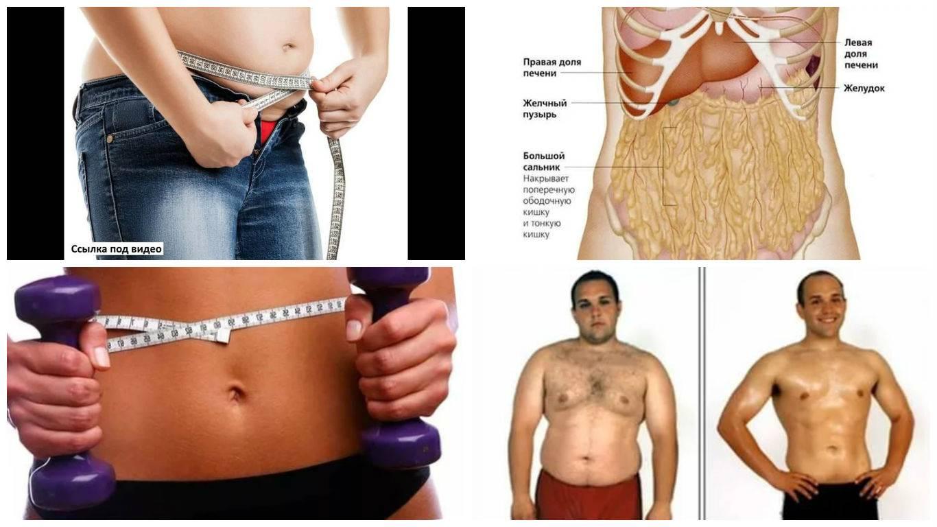 Как быстро, эффективно, правильно сжечь подкожный жир?