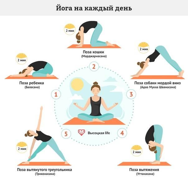 Йога для начинающих: 80 фото упражнений и алгоритм действий для достижения результата