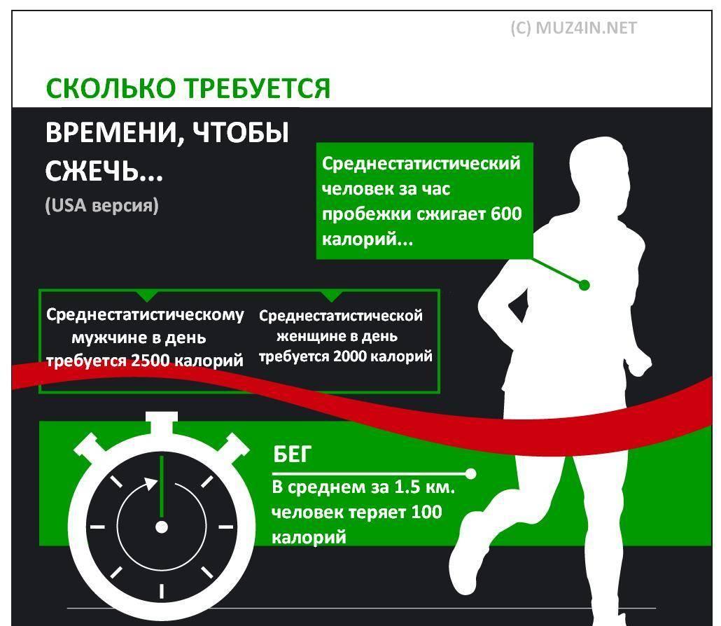 Как бегать чтобы сжигать жир, как правильно и сколько нужно бегать чтобы сжечь жир