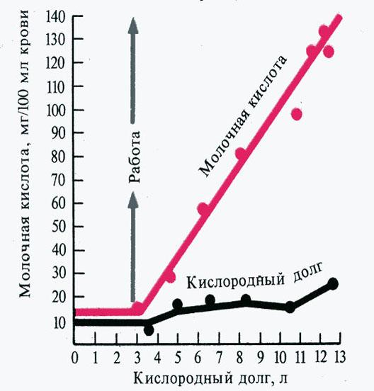 Кислородный долг