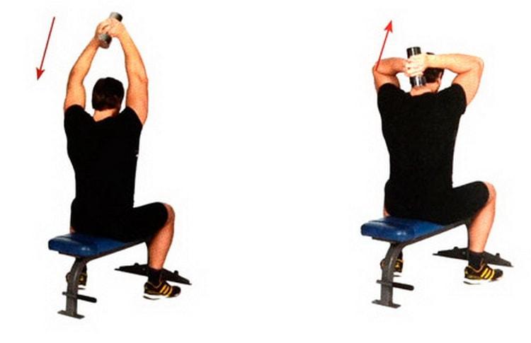 Жим гантелей на плечи сидя и стоя – техника, польза и недостатки