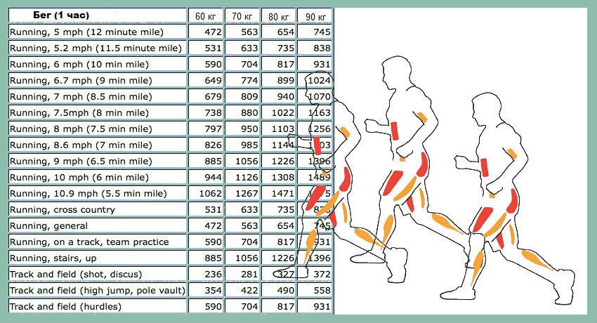10000 шагов сколько калорий сжигается в день
