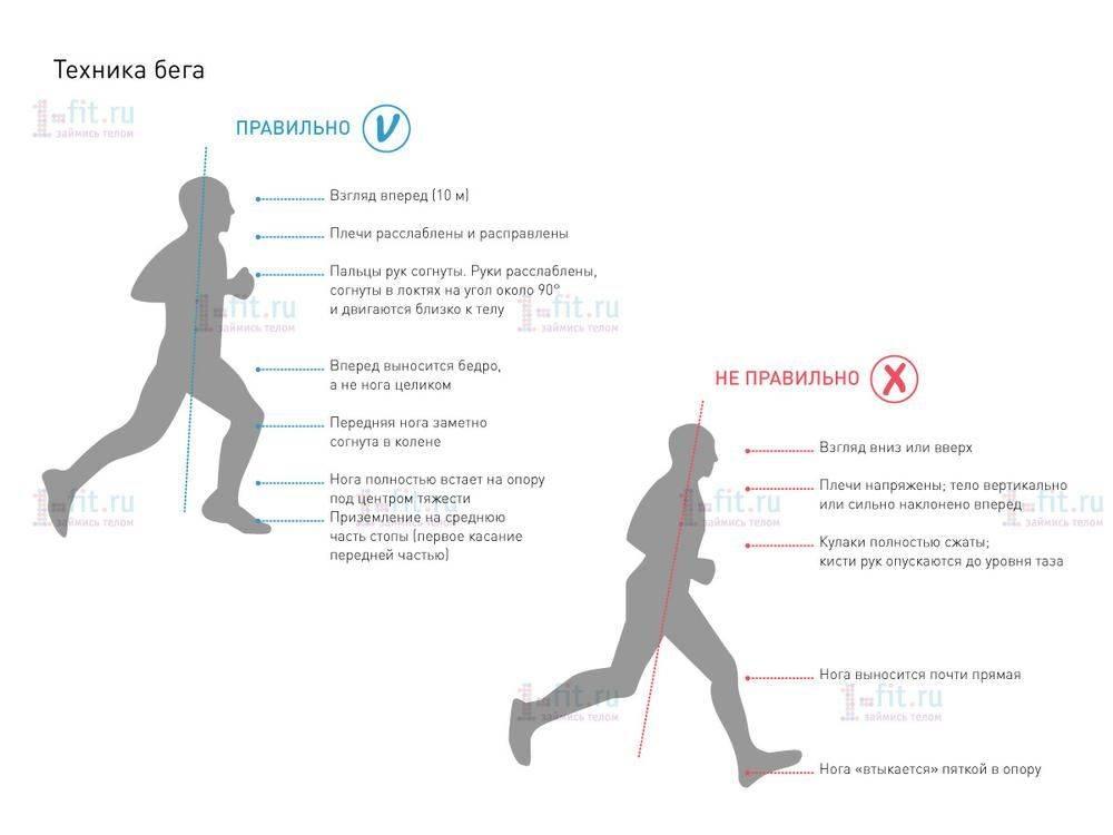 Как развить скорость бега? упражнения на развитие скорости бега