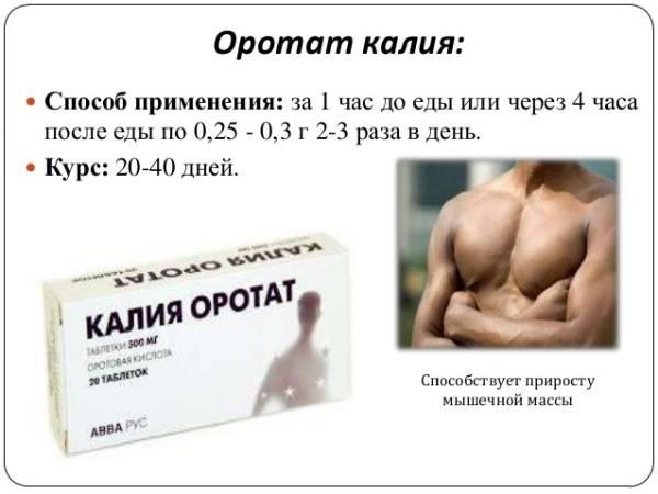 лекарство агапурин: инструкция по применению, отзывы и аналоги
