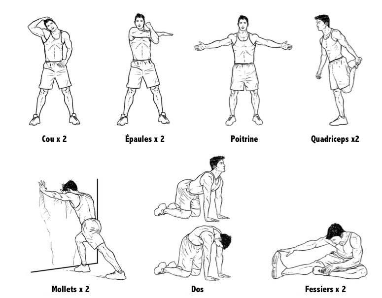 Топ-20 отличных упражнений для повышения потенции у мужчин и практики в домашних условиях