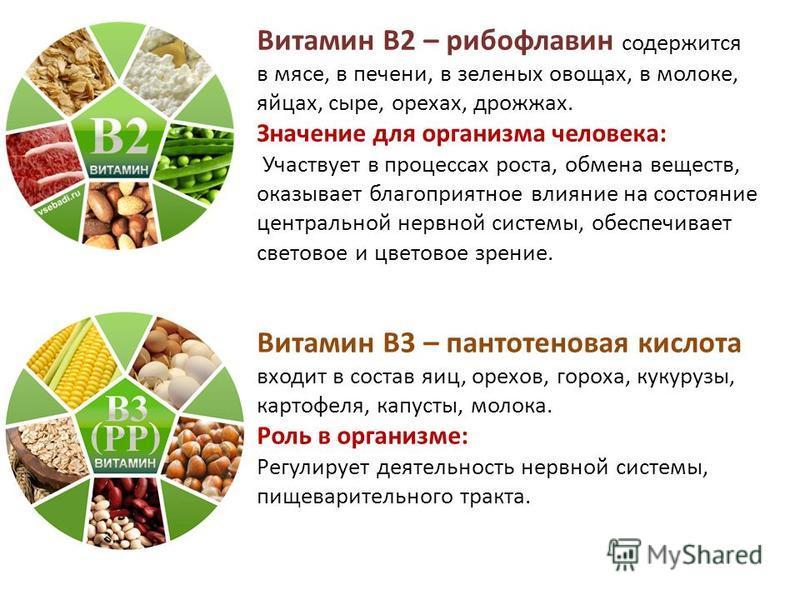 Описание витамина в1: роль и суточная норма, признаки и причины нехватки, показания к применению, источники