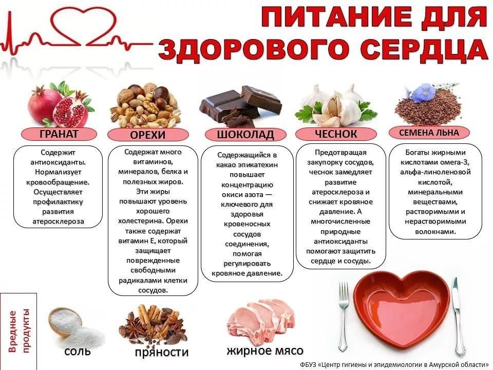 27 продуктов, полезных для сердца и сосудов: какие из них самые лучшие для укрепления и улучшения работы сердечно-сосудистой системы