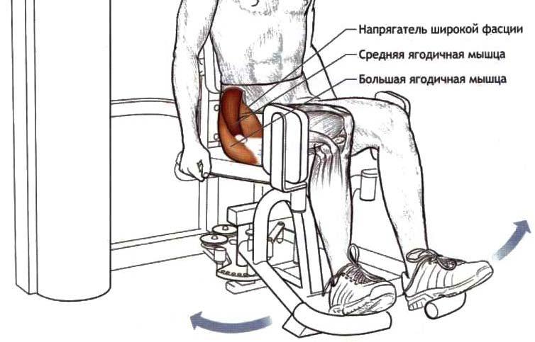 Сгибание ног в тренажёре: виды упражнений, техника выполнения, альтернативные варианты