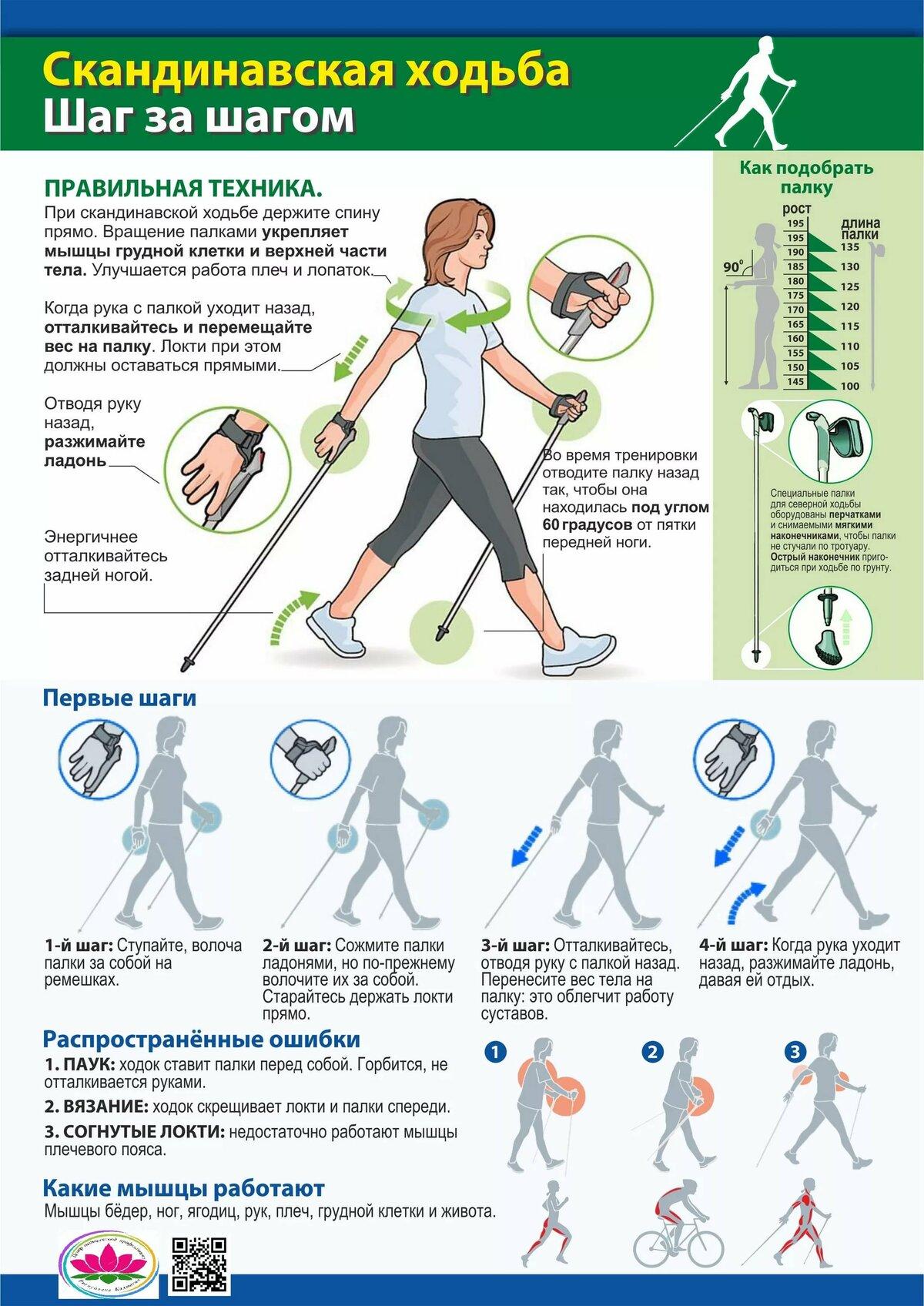 Что такое тренажер скандинавская ходьба и как правильно на нем ходить?