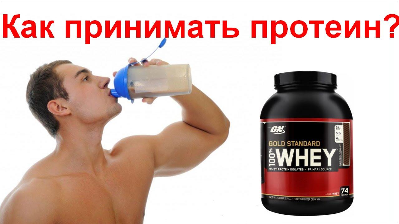 Чем полезен сывороточный протеин для организма, как и сколько его принимать и какие есть побочные эффекты