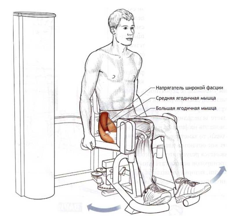 Как накачать попу, не накачивая ноги: упражнения на ягодицы с минимальной нагрузкой на квадрицепсы