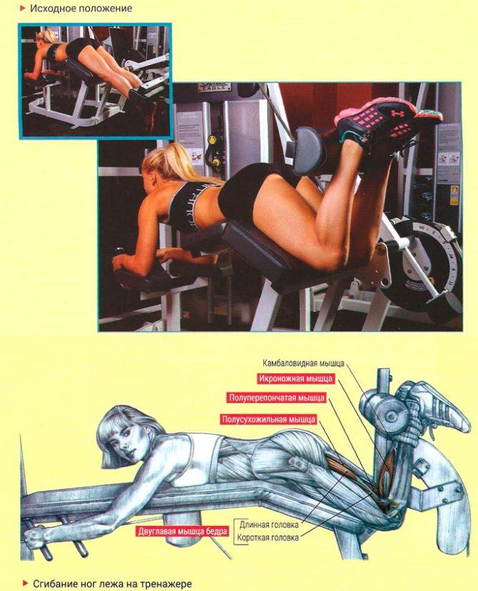 Упражнения с гантелями для бицепса бедра (задняя поверхность бедра): 2 готовых плана