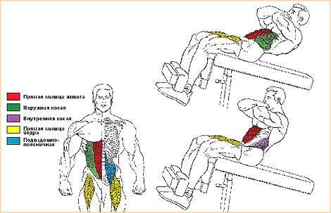 Скручивания с поворотами корпуса