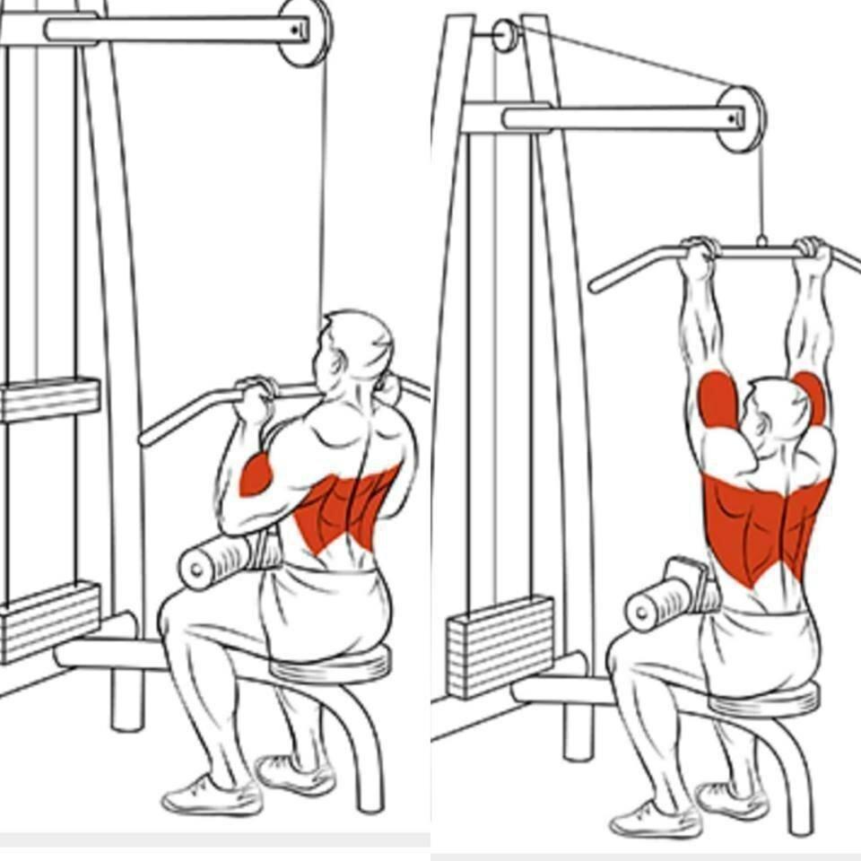 Упражнения для накачивания «крыльев» в тренажерном зале - смотреть видео
