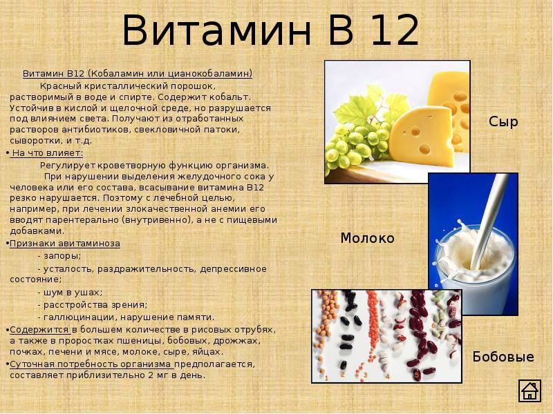 Витамин в12: полезные свойства и вред | польза и вред