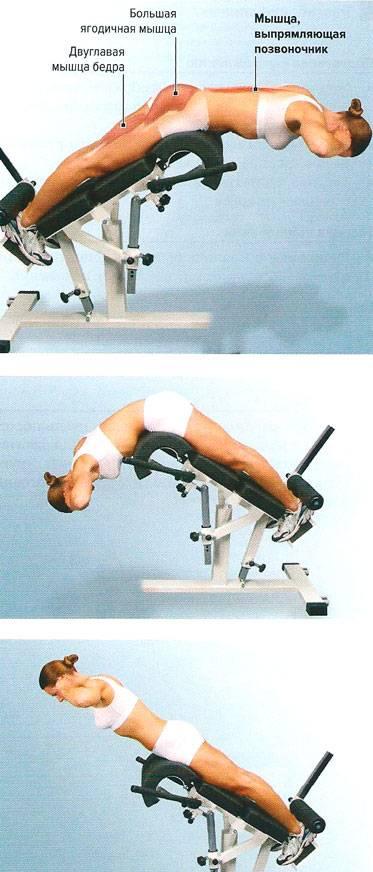 Тренажер гиперэкстензия – легкий способ накачать красивую спину