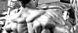 Прокачка спины. качаем широчайшие