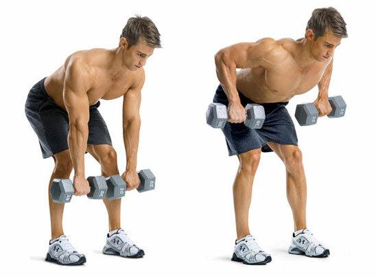 Упражнения на ноги со штангой.