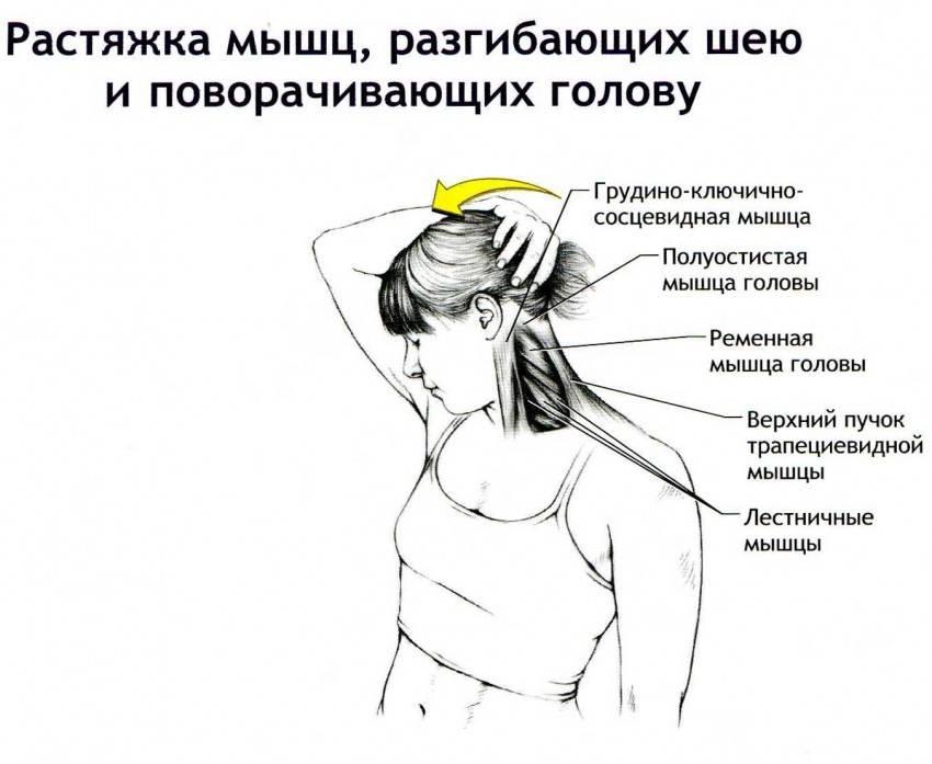 Упражнения для шеи: топ-20 занятий при остеохондрозе. инструкция как накачать мышцы шеи (90 фото)