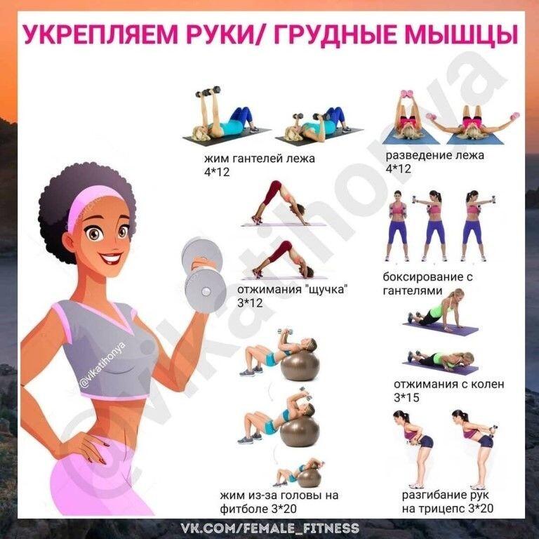 Комплекс упражнений на все группы мышц в домашних условиях: фото, видео