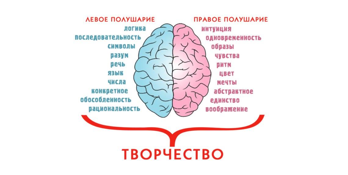 Связь мозг-мышцы. качаемся правильно. связь мозг-мышцы. качаемся правильно.