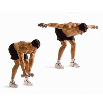 Разведение гантелей в стороны. виды упражнения+техника выполнения